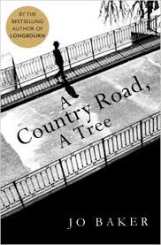 a-country-road-a-tree